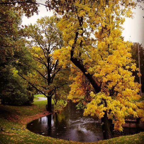 25 vietas Latvijā, uz kurām tu vēlēsies doties zelta rudens medībās - Izklaides blogs Fenikss Fun