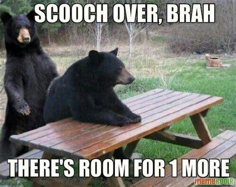 Patient Bear Meme - patient bears prefers to be by himself patient bear know your meme