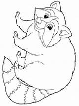 Raccoon Coloring Pages Animal Animals Mycoloring Pet Colors Wood Recommended sketch template
