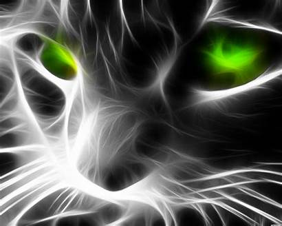Random Fractal Cat Desktop Background Eyes Mobile