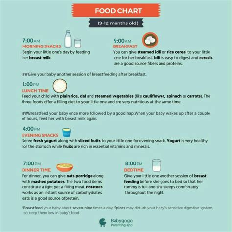 food time table   month baby