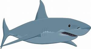 Whale Shark Clipart Animated Pencil And In Color Whale