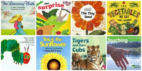 50 science books for preschool 908 | Sunflowers eating Books for Preschool 6