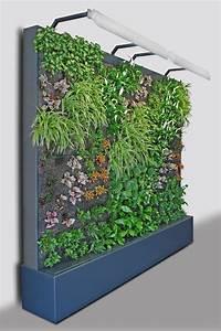 Pflanzen Zur Luftbefeuchtung : 1 mb ~ Sanjose-hotels-ca.com Haus und Dekorationen