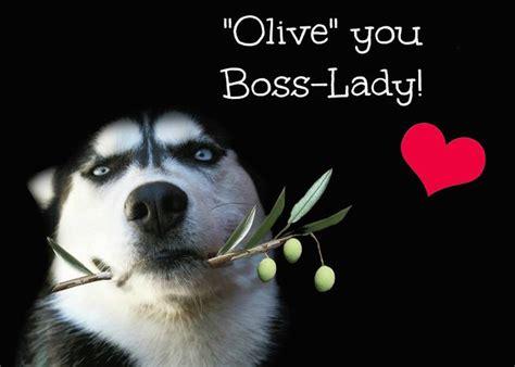 happy birthday boss  lady boss boss lady cute dog