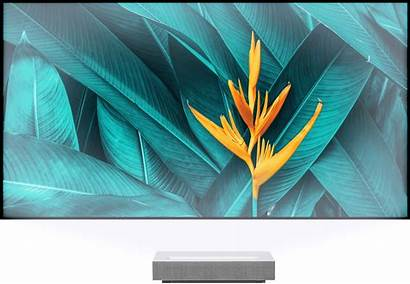 Projection Lg Elunevision 8k Screen Throw Short