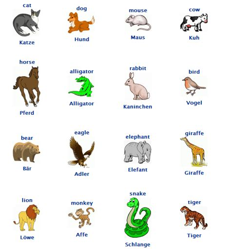 Animals Vocab German Arabic language Arabic kids