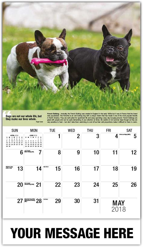 Dogs Calendar Mans Best Friend  C A Advertising Calendars