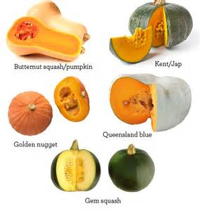 Types Of Pumpkins Australia 20 awesome paleo pumpkin recipes