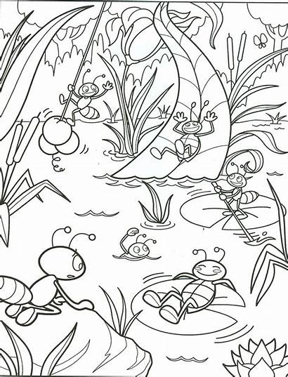 Summer Coloring Pages Printable Getcoloringpages Beach