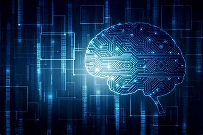 Neuroscience Learning Machine Brain Bringing Together Abstract