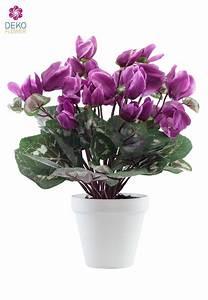Lavendel Pflanzen Im Topf : k nstliche alpenveilchen im topf 35cm lavendel ~ Frokenaadalensverden.com Haus und Dekorationen