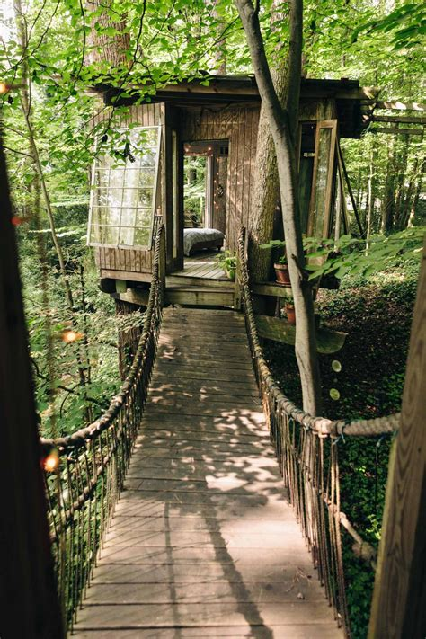 mind body  spirit treehouses woodz