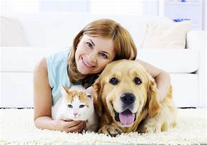Losing a Pet Can Lead to Life Questions – What Should ...