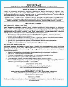 colorful audit senior resume sample component resume With resume writing fees
