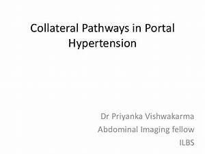 Collateral pathways in portal hypertension