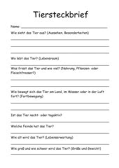 teachers tiersteckbrief blanko