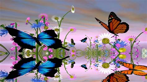 Animated Butterfly Wallpaper For Mobile - fantastic butterfly animated wallpaper http www