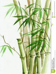 Watercolor Painting Of Bamboo Stock Illustration - Image ...