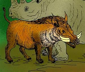 File:Metridiochoerus andrewsi.jpg - Wikimedia Commons  Metridiochoerus