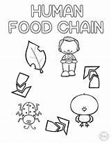 Craftplaylearn Animalfood Hauseoffweek sketch template