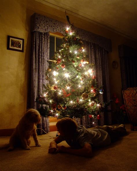 345 when the christmas tree gives the only light in the