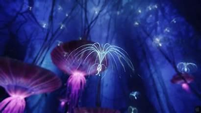Avatar Fanpop 1080 1920 Bioluminescence Jellyfish Tree