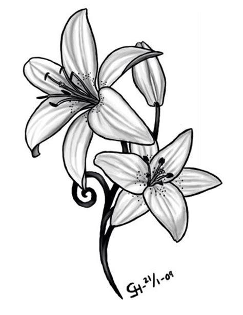 Daffodil | March Birth Flower | Tattoo Ideas - Lilly | May Birth Flower | Tattoo Ideas - b&w