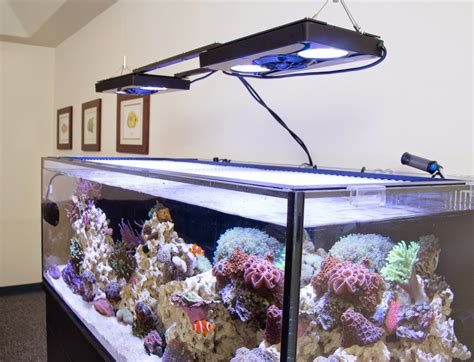 how to hang an aquarium light with a suspension kit