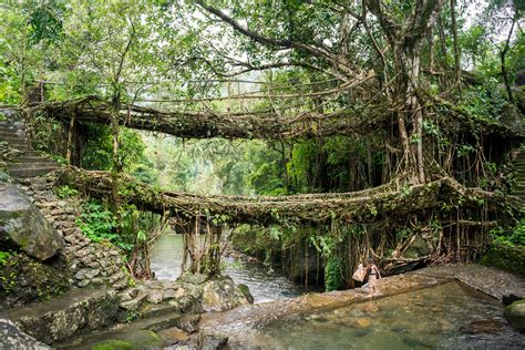 Nongriat And The Living Root Bridges Of Meghalaya Lost