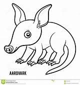 Aardvark Coloring Preview sketch template