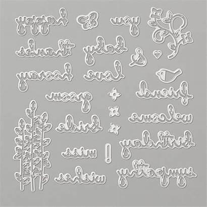 Dies Well Written Framelits Stamp Stampin Card