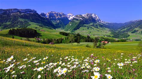 Best Time To Visit Switzerland by When Is The Best Time To Visit Switzerland Jacada Travel