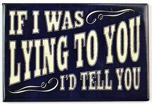 You Are A Light On A Hill Phillips If I Was Lying To You I 39 D Tell You Fridge Magnet Office