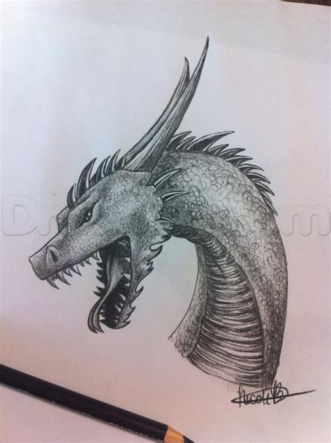 draw  dragon step  art art sketches dragon
