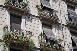 Immergrüne Winterharte Kübelpflanzen : winterharte balkonpflanzen diese 33 k belpflanzen sind zu empfehlen ~ Markanthonyermac.com Haus und Dekorationen