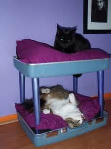 cat bunk beds suitcase cat bunk bed petdiys