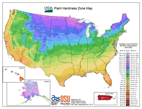 The New Usda Hardiness Map And Cold Climate Gardening