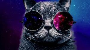 Free Space Cat Wallpaper Free « Long Wallpapers