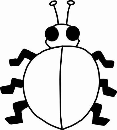 Ladybug Outline Bug Clipart Clip Ladybird Printable