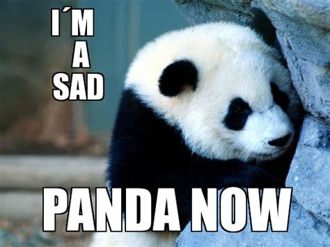 Sadness Meme - sad panda meme memes