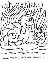 Snails Coloring Fun Pages sketch template