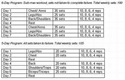 best bulking workouts best bodybuilding program for cutting what to wear for a