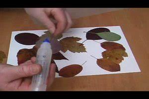 Aus Blättern Basteln : video herbstdekoration basteln aus bl ttern so gelingt 39 s ~ Lizthompson.info Haus und Dekorationen