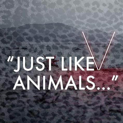 animals maroon  lyrics   animals