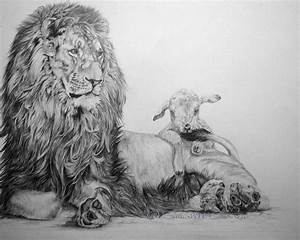 Lion and lamb by ~ElusiveDreams07 on deviantART | Images ...