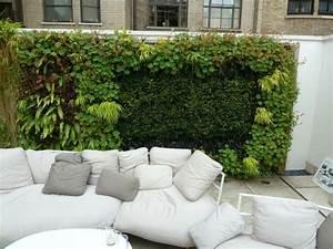 Haie Naturelle Brise Vue : brise vue balcon en quelques id es int ressantes ~ Premium-room.com Idées de Décoration