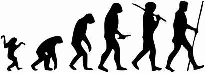 Evolution Designs Human