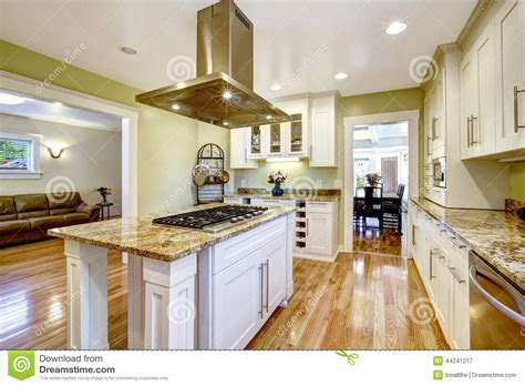 kitchen design pics kitchen island with built in stove granite top and 1307