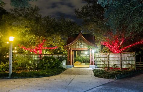 ls and lighting baton rouge a guide to holiday fun and festivity 225